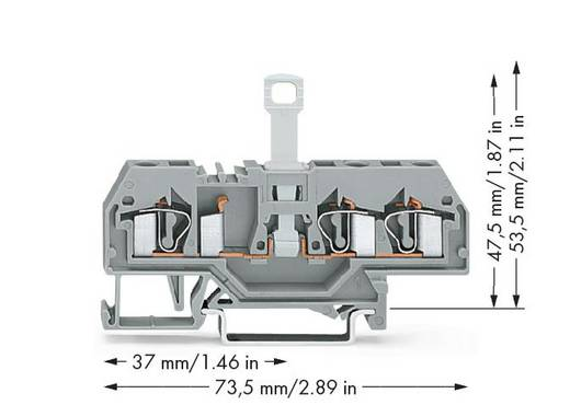 WAGO 281-683 Trennklemme 6 mm Zugfeder Belegung: L Grau 50 St.