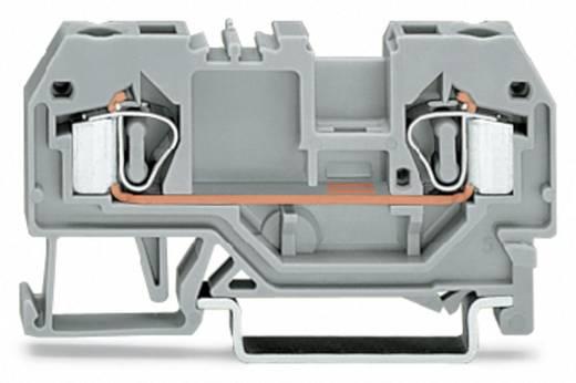 Durchgangsklemme 6 mm Zugfeder Orange WAGO 281-902 50 St.