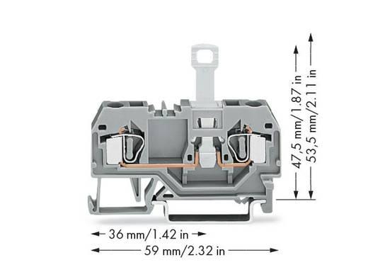 Trennklemme 6 mm Zugfeder Belegung: L Grau WAGO 281-912 50 St.
