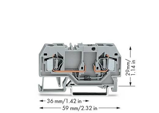 Diodenklemme 6 mm Zugfeder Belegung: L Grau WAGO 281-915/281-410 50 St.