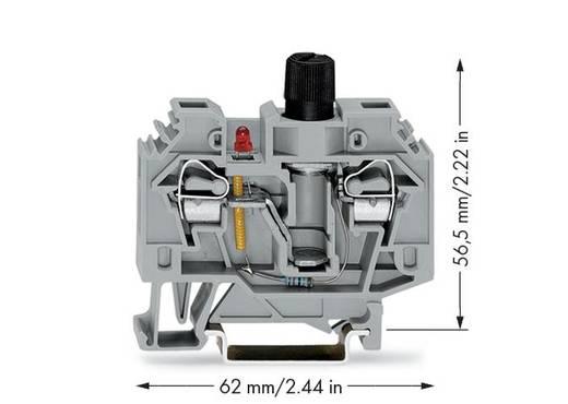 WAGO 282-128/281-413 Sicherungsklemme 13 mm Zugfeder Belegung: L Grau 40 St.
