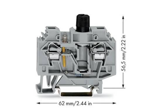Sicherungsklemme 13 mm Zugfeder Belegung: L Grau WAGO 282-128/281-418 40 St.