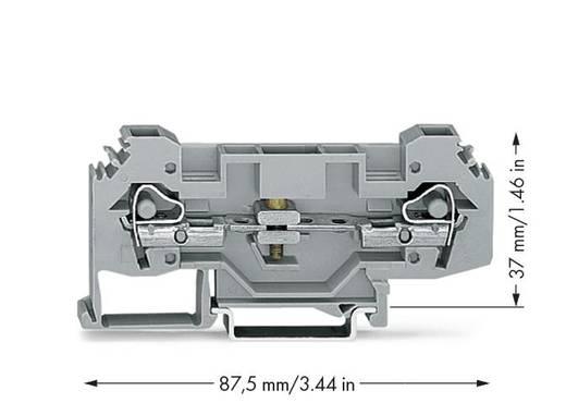 Trennklemme 8 mm Zugfeder Belegung: L Grau WAGO 282-135 25 St.
