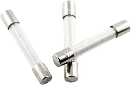 ESKA 557014 Hochspannungssicherung (Ø x L) 8 mm x 50 mm 0.5 A 1200 V Inhalt 1 St.