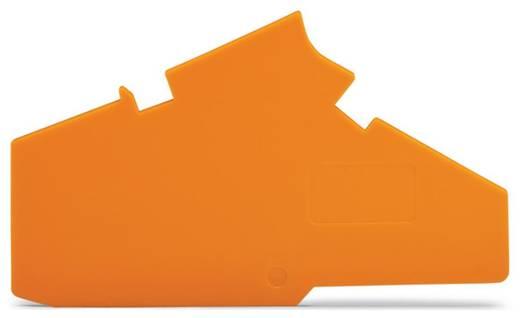 Abschluss- und Trennplatte WAGO Inhalt: 50 St.
