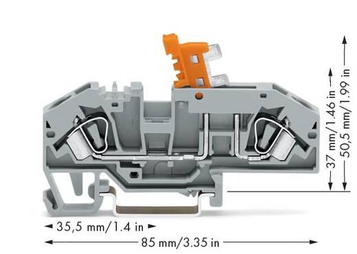 Trennklemme 8 mm Zugfeder Belegung: L Grau WAGO 282-697 25 St.