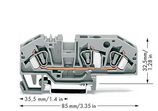 Durchgangsklemme 8 mm Zugfeder Belegung: L Grau WAGO 282-699 25 St.