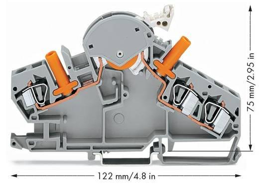 Trennklemme 8 mm Zugfeder Belegung: L Grau WAGO 282-860 20 St.