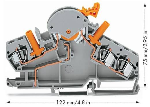 Trennklemme 8 mm Zugfeder Belegung: L Grau WAGO 282-870 20 St.