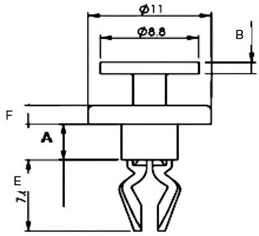 Spreizniete Loch-Ø 5.5 mm Schwarz PB Fastener RFL-1BK 1 St.