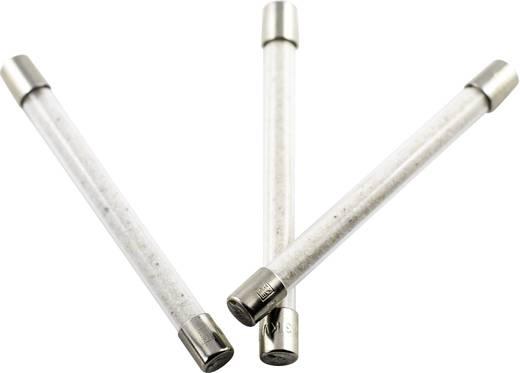 ESKA 558020 Hochspannungssicherung (Ø x L) 8 mm x 85 mm 2 A 3000 V Inhalt 1 St.