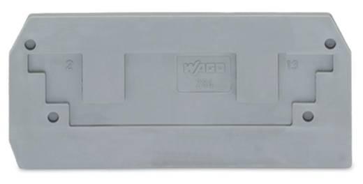 Abschluss- und Zwischenplatte 284-325 WAGO Inhalt: 100 St.