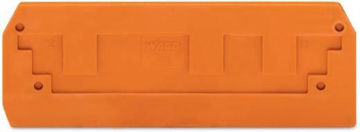 Abschluss- und Zwischenplatte 284-339 WAGO Inhalt: 100 St.