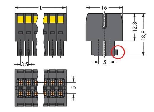 WAGO Buchsengehäuse-Kabel 713 Polzahl Gesamt 22 Rastermaß: 3.50 mm 713-1111 25 St.
