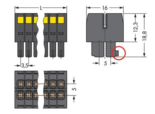 WAGO Buchsengehäuse-Kabel 713 Polzahl Gesamt 22 Rastermaß: 3.50 mm 713-1111/000-9037 25 St.
