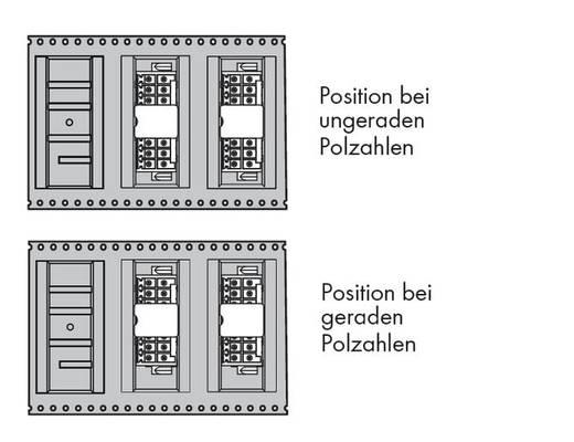 WAGO Stiftleiste (Standard) 1735 Polzahl Gesamt 16 Rastermaß: 3.50 mm 713-1408/116-000/997-407 120 St.
