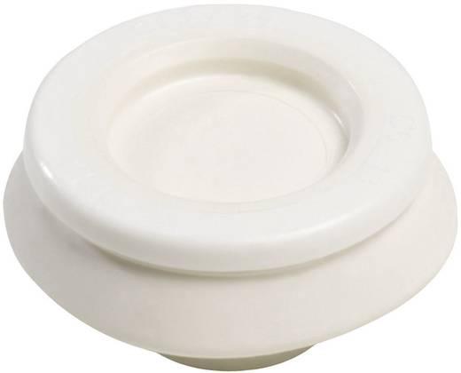 Kabeldurchführung Klemm-Ø (max.) 10 mm Polyamid, TPE (Geruchneutrales Spezialgummigemisch) Reinweiß (RAL 9010) Wiska C