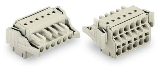WAGO Buchsengehäuse-Kabel 721 Polzahl Gesamt 7 Rastermaß: 5 mm 721-2107/037-000 50 St.