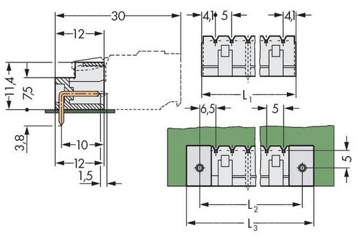 WAGO Stiftleiste (Standard) 2060 Polzahl Gesamt 3 Rastermaß: 5 mm 721-433/001-040 200 St.