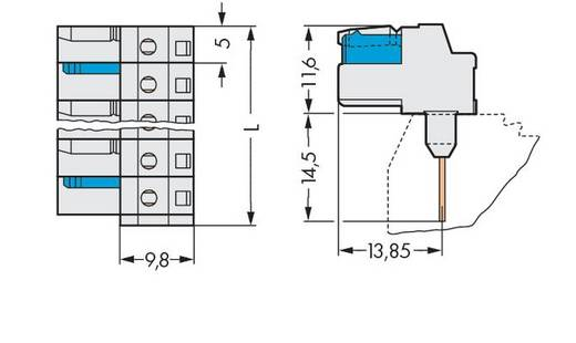 WAGO Buchsengehäuse-Platine 722 Polzahl Gesamt 14 Rastermaß: 5 mm 722-244/005-000 25 St.