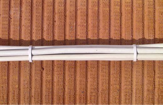 Kabelhalter für Steckmontage im Mauerwerk Hell-Grau 743022 1 St.