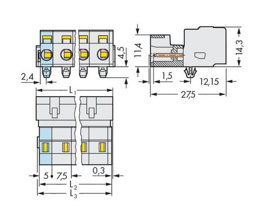 WAGO Stiftleiste (Standard) 2080 Polzahl Gesamt 3 Rastermaß: 7.50 mm 723-603/018-042 100 St.