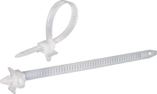 Kabelbinder-Sortiment 150 mm Natur mit Spreizanker KSS 541295 PHV150 100 St.