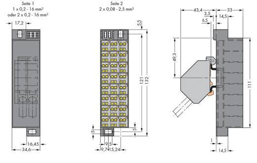 Potentialklemme Zugfeder Belegung: L Grau WAGO 726-652 10 St.