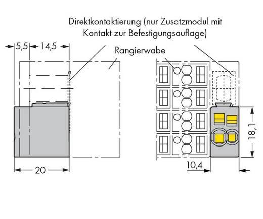 Zusatzmodul für Rangierwaben WAGO Inhalt: 25 St.