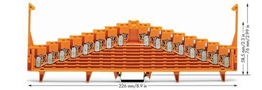 Potentialklemme 7.62 mm Zugfeder Orange WAGO 727-125 25 St.