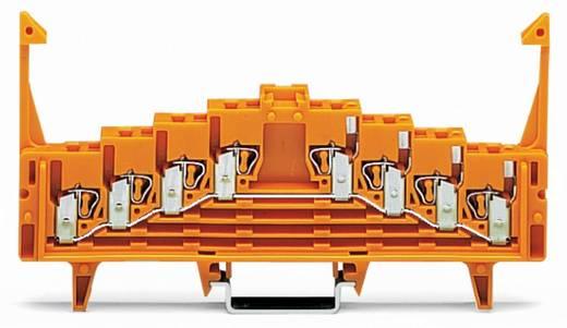 Potentialklemme 7.62 mm Zugfeder Orange WAGO 727-235 50 St.