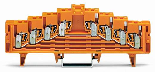 Potentialklemme 7.62 mm Zugfeder Orange WAGO 727-236/024-000 50 St.