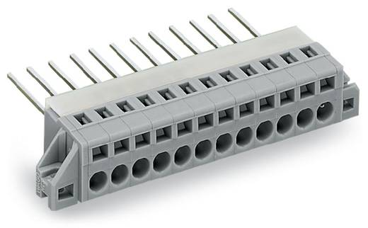 Federkraftklemmblock 2.50 mm² Polzahl 7 731-137/048-000 WAGO Grau 25 St.