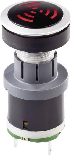 Akustischer Signalgeber RONTRON-R Geräusch-Entwicklung: 85 dB 12 - 24 V AC/DC Inhalt: 1 St.