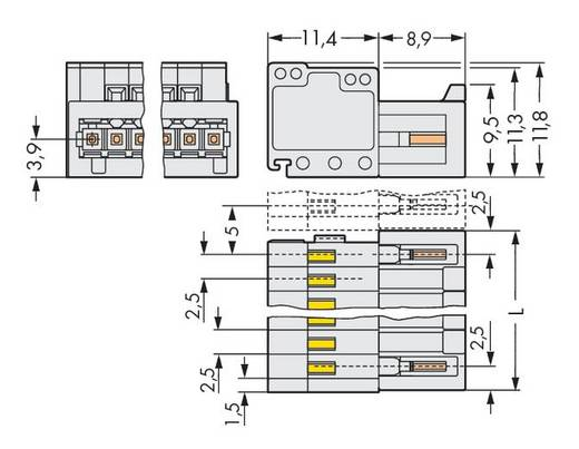 WAGO Stiftleiste (Standard) 2092 Polzahl Gesamt 8 Rastermaß: 2.50 mm 733-208 100 St.