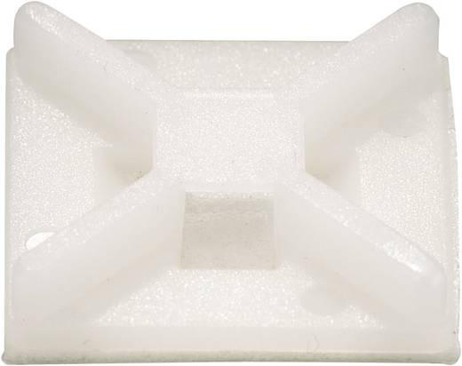 Befestigungssockel 4fach einfädeln Transparent Conrad Components 543234 50 St.