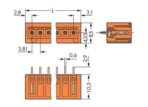 WAGO Stiftleiste (Standard) 2140 Polzahl Gesamt 5 734-235/100-000 100 St.