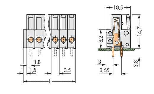 WAGO Buchsengehäuse-Platine 734 Polzahl Gesamt 20 Rastermaß: 3.50 mm 734-480 25 St.