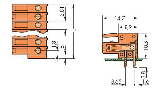 WAGO Buchsengehäuse-Platine 734 Polzahl Gesamt 14 Rastermaß: 3.81 mm 734-574 25 St.