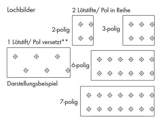 Federkraftklemmblock Polzahl 2 PUSHWIRE PCB TERM. 2 POLE 3.81mm PIT WAGO Orange 660 St.
