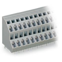 Dvojradový svorka WAGO 736-216, 2.50 mm², Počet pinov 32, sivá, 21 ks