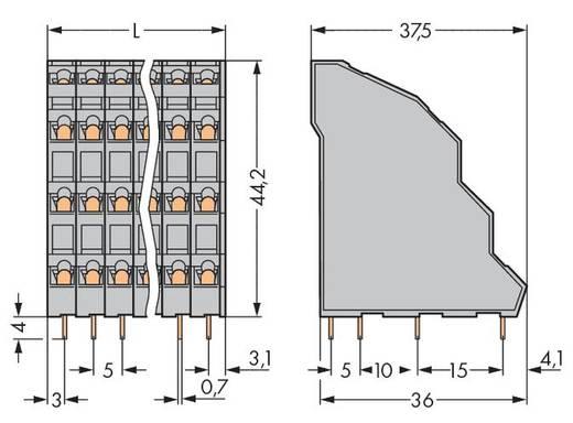Vierstockklemme 2.50 mm² Polzahl 12 WAGO Grau 48 St.
