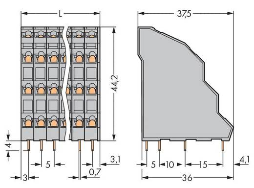 Vierstockklemme 2.50 mm² Polzahl 24 738-106 WAGO Grau 24 St.