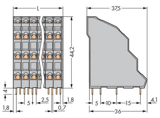 Vierstockklemme 2.50 mm² Polzahl 24 738-206 WAGO Grau 24 St.