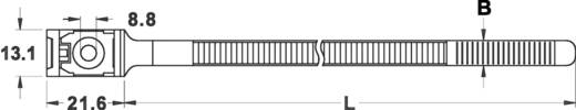 Kabelbinder 150 mm Weiß mit Schraubsockel KSS 544730 PMA150 1 St.
