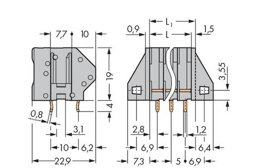 Federkraftklemmblock 4.00 mm² Polzahl 4 745-104/005-000 WAGO Grau 80 St.