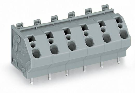 Federkraftklemmblock 4.00 mm² Polzahl 6 WAGO Grau 40 St.