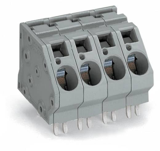 Federkraftklemmblock 16.00 mm² Polzahl 4 WAGO Grau 24 St.