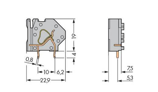 Federkraftklemmblock 4.00 mm² Polzahl 1 WAGO Grau 200 St.