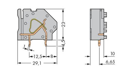 Federkraftklemmblock 6.00 mm² Polzahl 1 745-843 WAGO Licht-Grau 100 St.